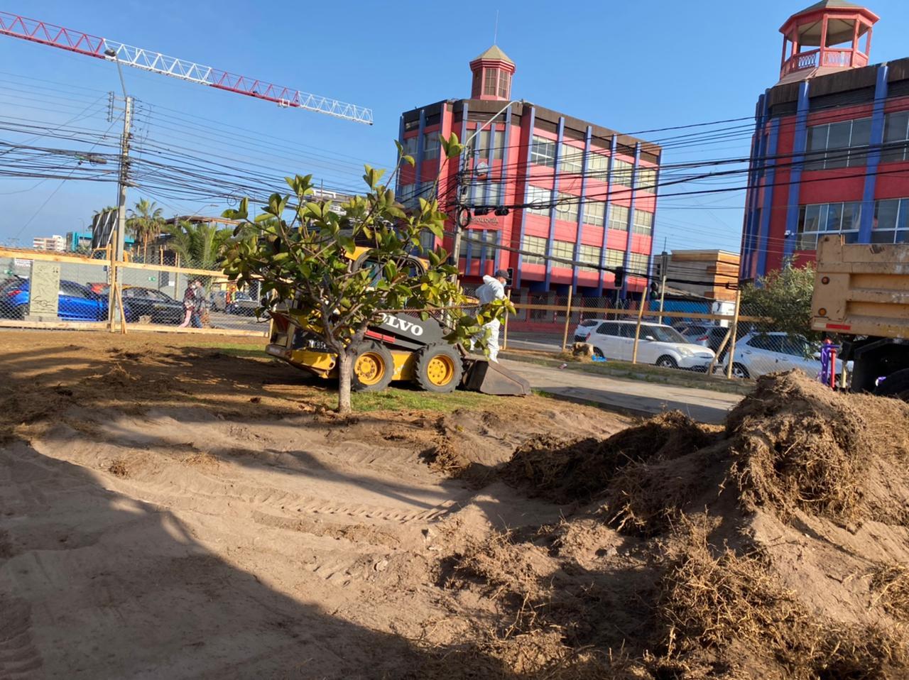 """Municipalidad de Iquique inicia obras de recuperación de """"Plaza Brasil"""""""